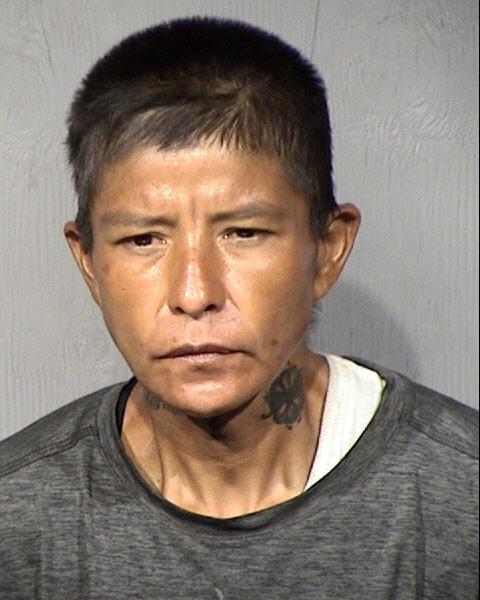 Robynne Shelby Denetdeel Mugshot / Maricopa County Arrests / Maricopa County Arizona