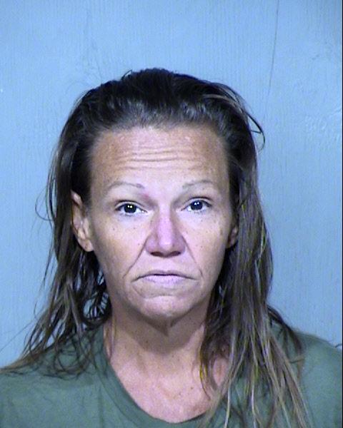 Dana Lee Hill Mugshot / Maricopa County Arrests / Maricopa County Arizona
