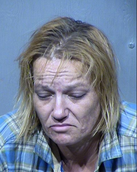 Dana Michelle Forister Records Results - Maricopa County Arizona - Dana Michelle Forister Details