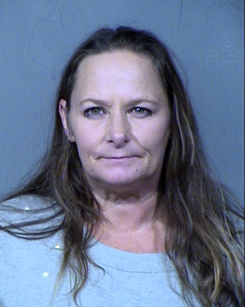 Jodi Marie Warnick Records Results - Maricopa County Arizona - Jodi Marie Warnick Details