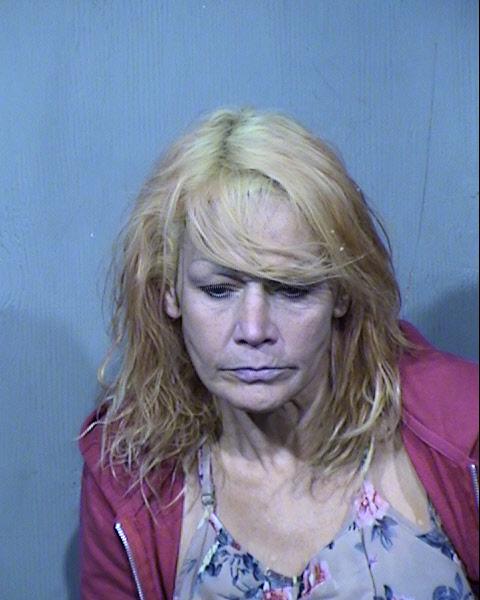 Michelle Marie Stone Records Results - Maricopa County Arizona - Michelle Marie Stone Details